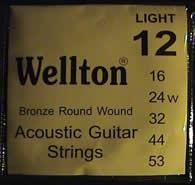 Wellton ACB-12